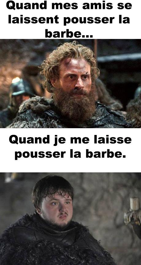 barbe_12