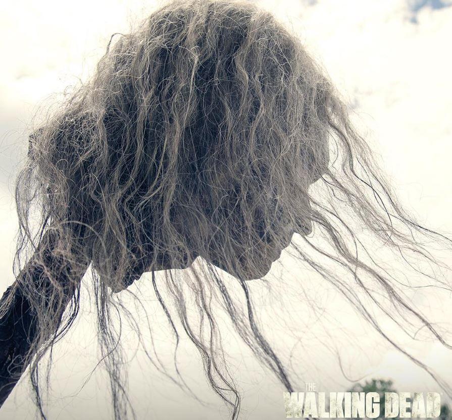 2016-11-23-15_21_11-the-walking-dead-amcthewalkingdead-%e2%80%a2-photos-et-videos-instagram