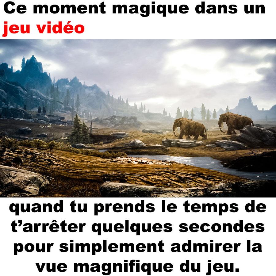 vue_magnifique