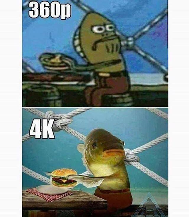 360p VS 4K