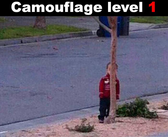 Camouflage level 1