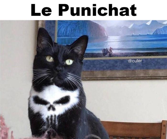 Le Punichat