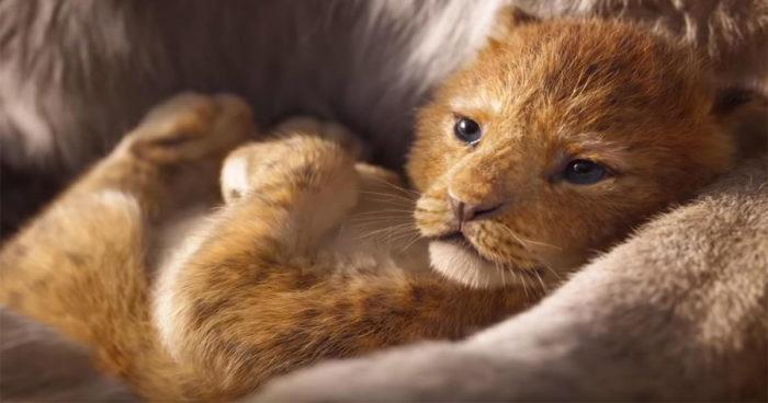 Le Roi Lion: Le film en live action ne sera pas identique à celui de 1994