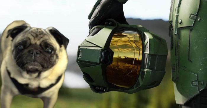 343 Industries a recruté un carlin pour faire des bruits d'extra-terrestres dans Halo Infinite