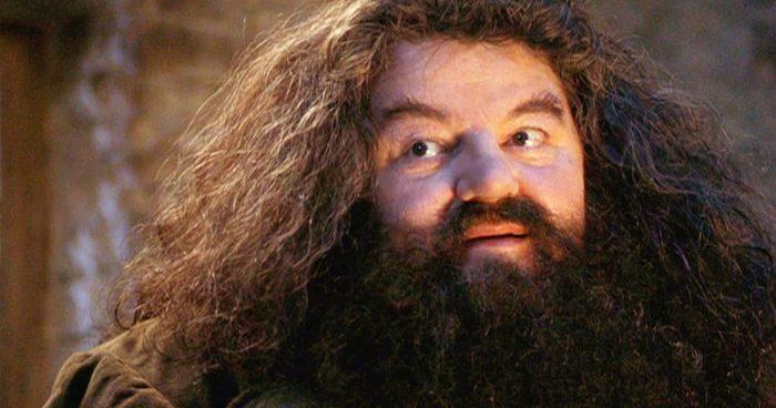 Hagrid et Tom Jedusor pourraient faire une apparition dans Les Animaux Fantastiques 3