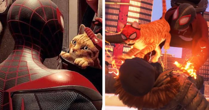 Miles Morales: Un chat qui vit dans votre sac pour vous aider à lutter contre le crime